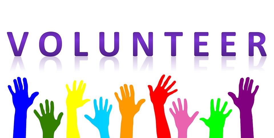 Wiele NGO-sów opiera swoją działalność o wykorzystanie wolontariuszy. Źródło: Pixabay.com.